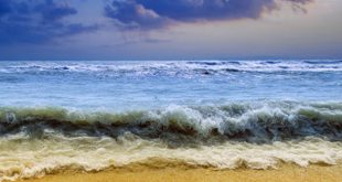 دانلود افکت صوتی ساحل دریا و امواج