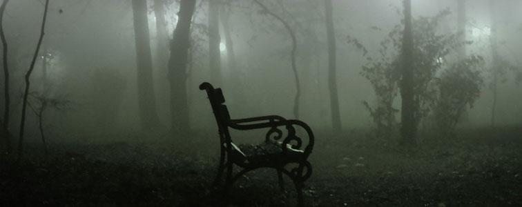 دانلود افکت صوتی محیطی جنگل