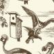 صدای پرنده گان - نقطه ای